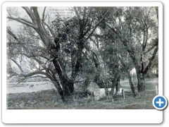 Charlston Springs near Beverly around 1907.